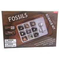 KM Fossil